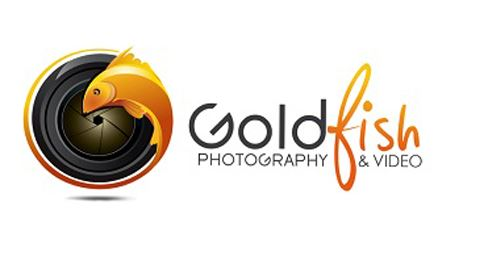 Goldfish Photography